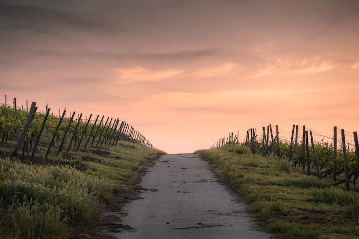 転職で大切なことは、自分の進むべき道がどこにあるかを考えること